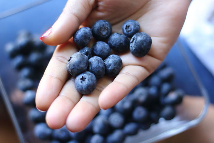 Cropped image of hand holding fruits blackberries