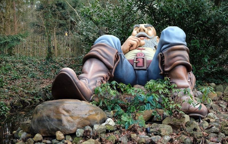 Attraction theme park the Efteling, Kaatsheuvel, the Netherlands Real People Plant Day Nature Land Lifestyles One Person Leisure Activity Vertebrate Mammal Tree Men Relaxation Sitting Canine Dog One Animal Outdoors Pet Owner