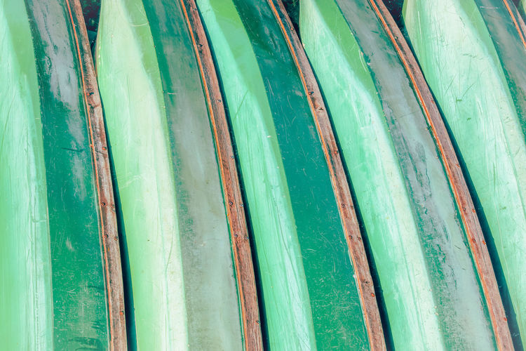 Detail shot of bamboo