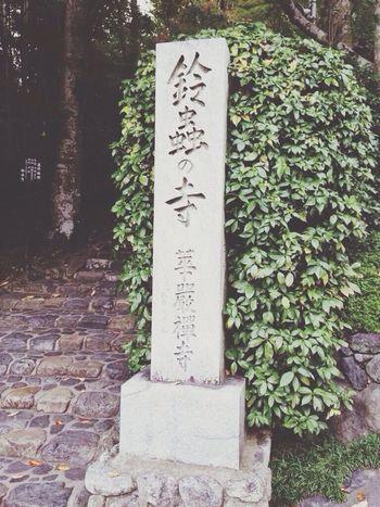 鈴虫寺 Kyoto