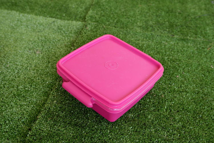 High angle view of pink toy on grassy field