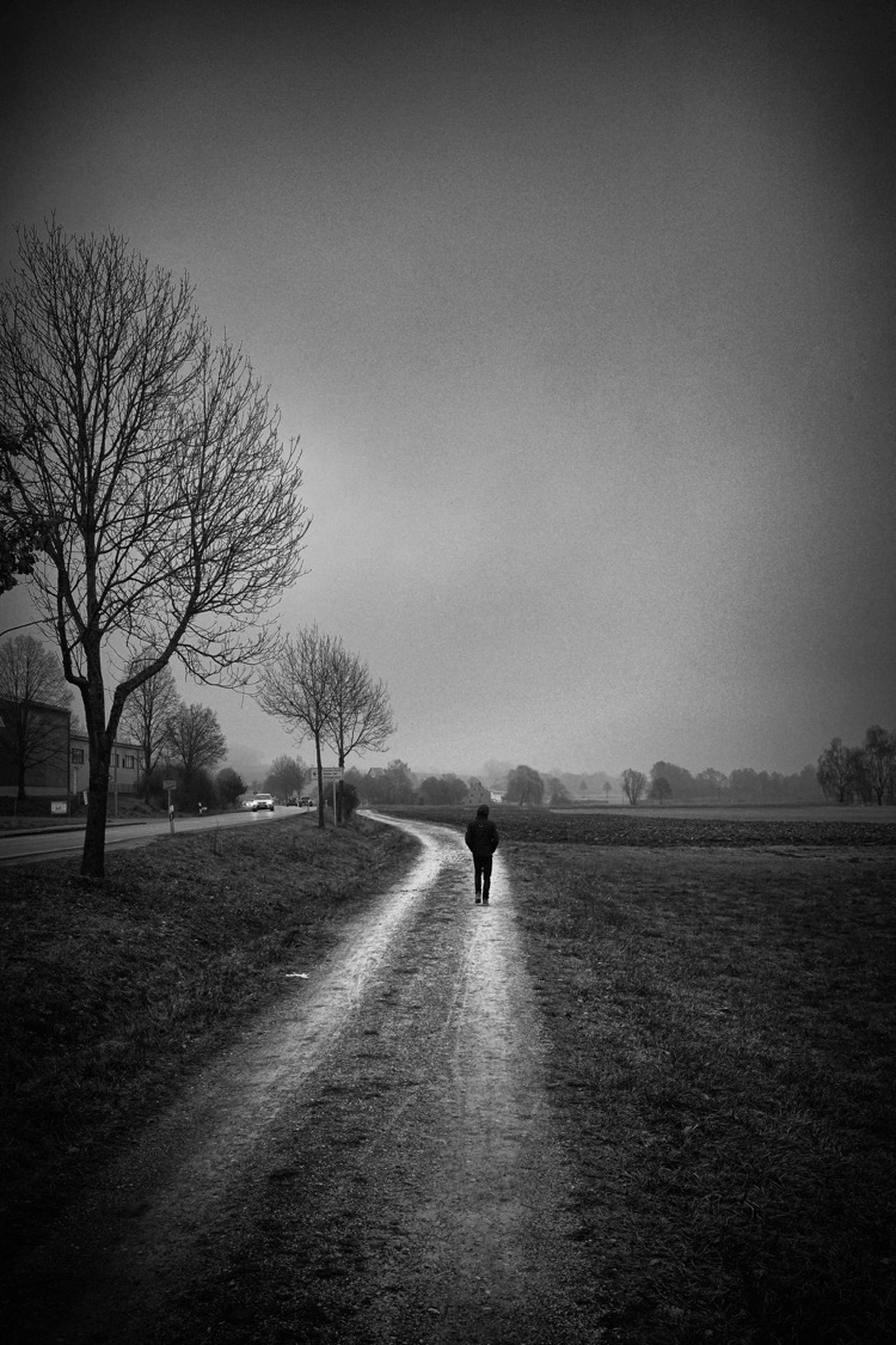 darkness, black and white, tree, morning, sky, monochrome, monochrome photography, black, plant, nature, one person, white, light, bare tree, silhouette, environment, horizon, full length, road, landscape, cloud, walking, land, dawn, transportation, mist, tranquility, sunlight, outdoors, solitude, beauty in nature, tranquil scene, the way forward, rear view, fog, scenics - nature, field, adult, men, loneliness, vignette