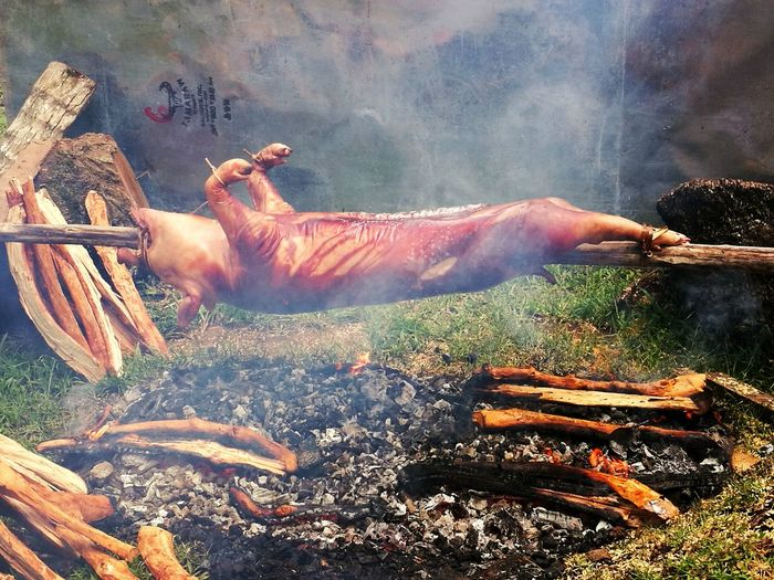 Outdoors No People Roast Pig Philippine's Best