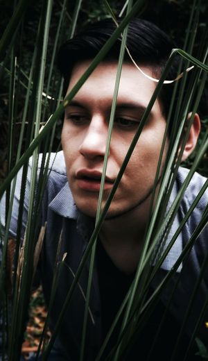 Close-up of young man by grass