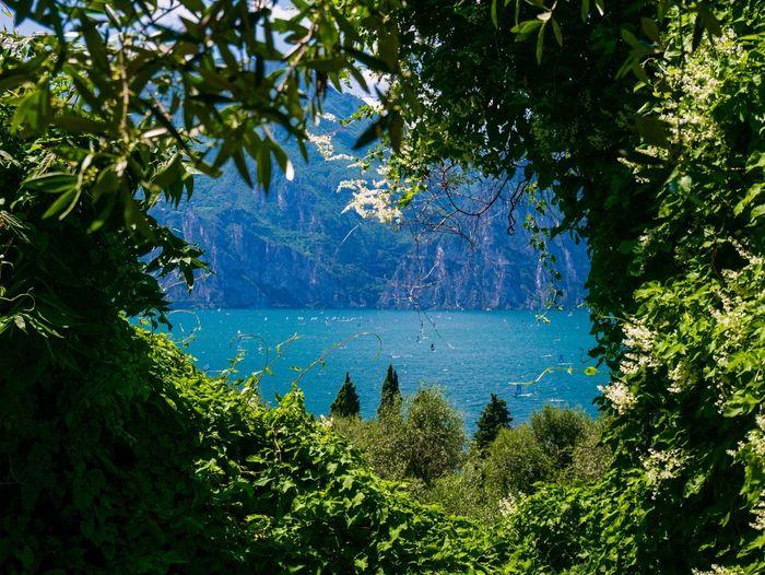 Gardalake Lago