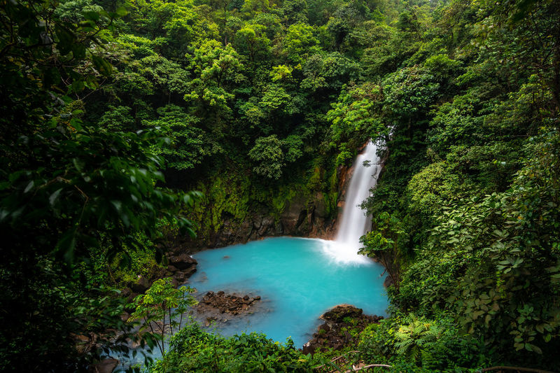 rio celeste Costa Rica Costarica Waterfall Flowing Rioceleste Rio Celeste Turquoise Multicolors  Green Nature