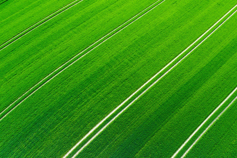 Green Color No People Backgrounds Full Frame Agriculture Field Plant Pattern Nature Growth Land Beauty In Nature Day Landscape High Angle View Rural Scene Striped Environment Outdoors In A Row