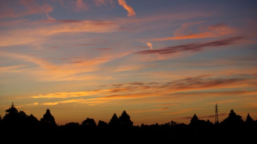 Sky Sunset Cloud - Sky Silhouette Beauty In Nature Tree Orange Color
