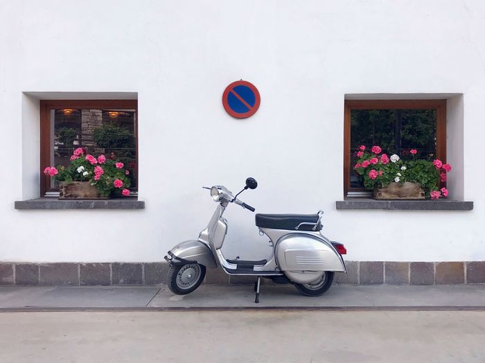 Bicycle on potted plant against wall