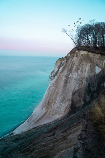 Sky Water Scenics - Nature Sea Beauty In Nature Rock Tranquility Horizon Tranquil Scene Horizon Over Water Nature No People Land Rock - Object Day Tree Beach Non-urban Scene Solid Outdoors Møns Klint Danmark Scandinavia Cliff Sunset