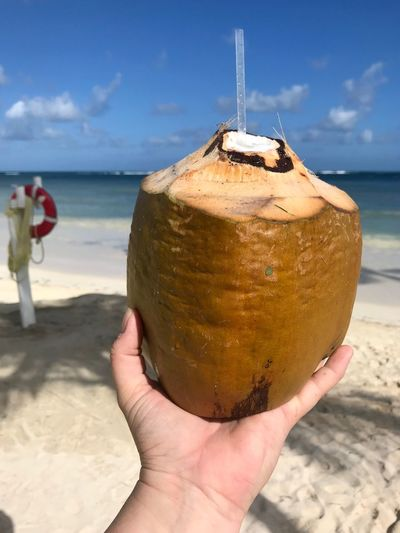 Cropped Hand Holding Coconut At Beach Against Blue Sky