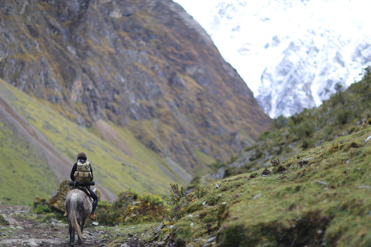 Horse back riding in the mountains Mountain One Animal Mammal Day Domestic Pets Nature Vertebrate Mountain Range Scenics - Nature Environment People Activity Landscape Beauty In Nature Outdoors Horse Horse Riding Peru Bolivia Girl One Woman Only View Travel