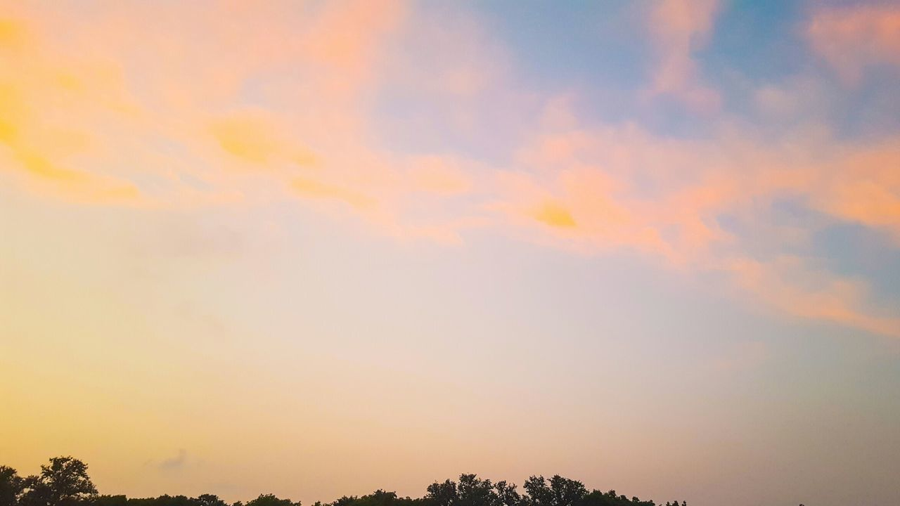 beauty in nature, nature, sunset, tranquility, scenics, tranquil scene, sky, low angle view, outdoors, no people, cloud - sky, tree, day
