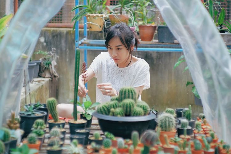 Adult Casual Clothing Child Day Females Front View Growth Holding Innocence Lifestyles Looking Nature One Person Outdoors Plant Potted Plant Real People Selective Focus Women Young Adult