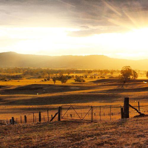 Golden hour! Mansfieldmtbuller Beautiful Light Australia Nenaghpastoral Beautiful Light Sunset_collection