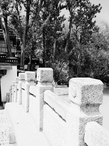 Potala Palace, Tibet, China Potala Palace And Surroundings New Talents Tibet Budhism China Relaxing Eyeem Photography EyeEm Best Shots Black And White Monochrome Photography Mobile Photography Architecture Trees Nature Enjoying Life EyeEm Gallery EyeEm Masterclass Eyeem Market Motivation Walking Around Happy Potala Palace Magnificent China Miles Away