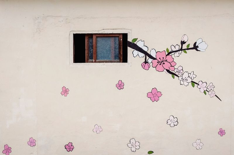 Wall painting Architecture Window Built Structure Pink Color Building Exterior No People Outdoors Flower Wall Wall - Building Feature Wall Painting Flower Head Pink Flower Sakura Cherry Blossoms Azalea Spring Flowers Drawing Painting Arts Culture And Entertainment Art Is Everywhere Minimalism Pink Romantic Korea