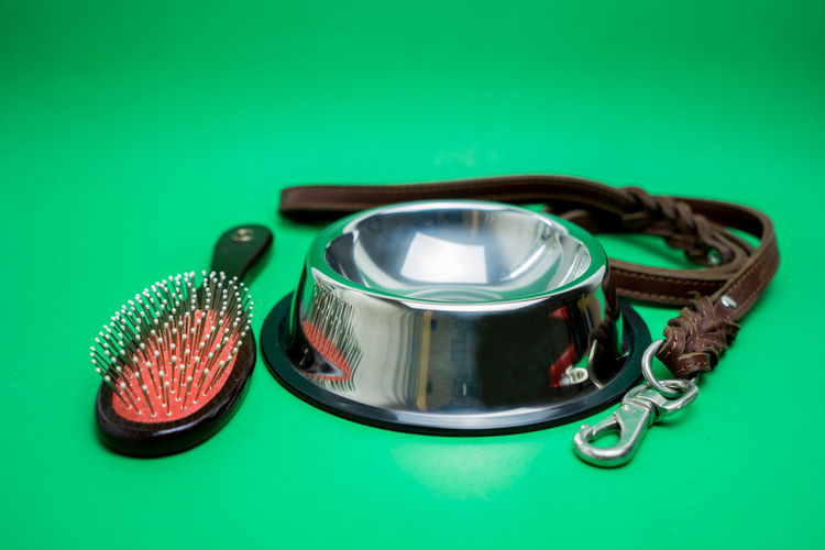 Bowl stainless with leashes and brush for pet on green background. Pet accessories concept Studio Shot Colored Background Green Color Green Background Indoors  Metal No People Close-up Medical Equipment Technology Stethoscope  Table Still Life Copy Space Medical Instrument High Angle View Blue Healthcare And Medicine Equipment Turquoise Colored Silver Colored Grooming Brush Dog Supplies Accessories