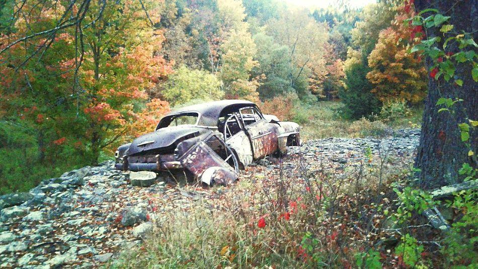 Oneonta Outdoors Nature Old Vehicle Damaged
