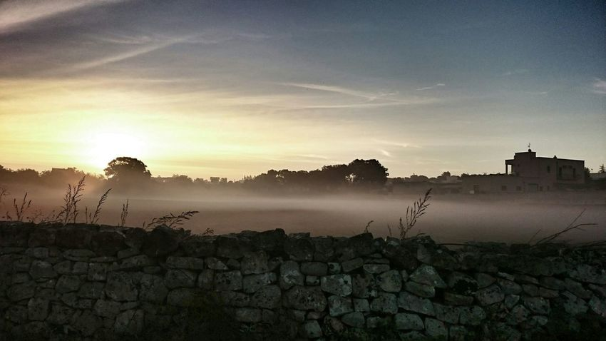 EyeEm Nature Lover Nebbia Countryside Getting Inspired Puglia EyeEm Italy Nature Colors EyeEm Gallery Nature_collection Onlyinitaly Morning