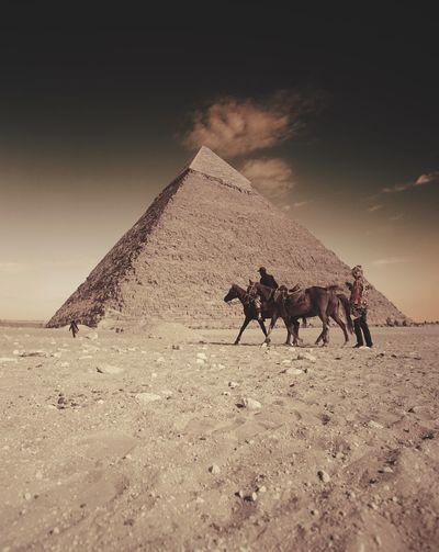 Horse riding on sand at desert against sky