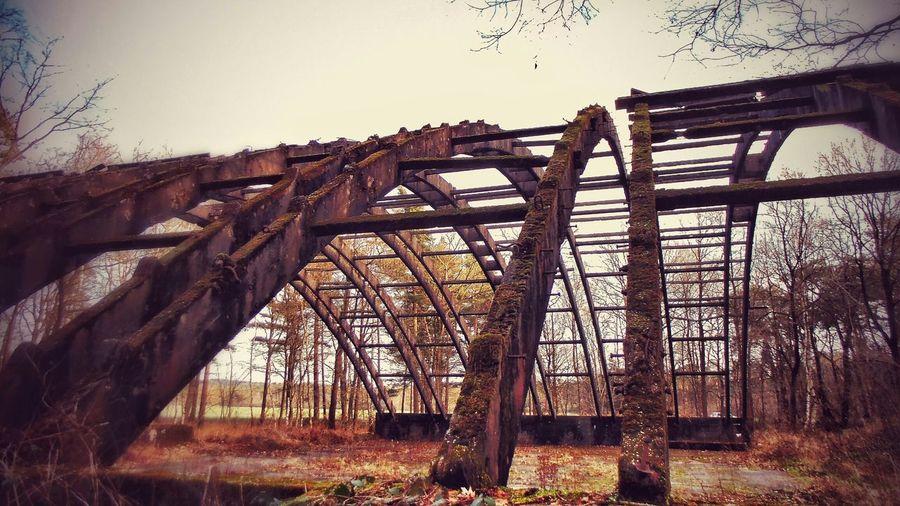 Stahlbeton Gerüst Lostplace Sonnenuntergang Germany Fliegerhorst Nature Zwischen Bäumen Abandoned Places Abandoned & Derelict