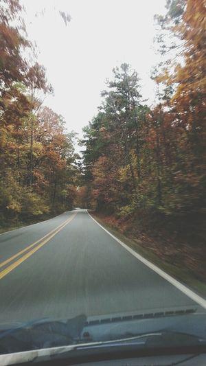 Fall Autumn Leaves Cruzin'