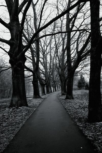Darkness And Light Naturelovers Open Edit Blackandwhite Photography Blackandwhite Blackandwhitephotography Nature_collection Exploring Nature
