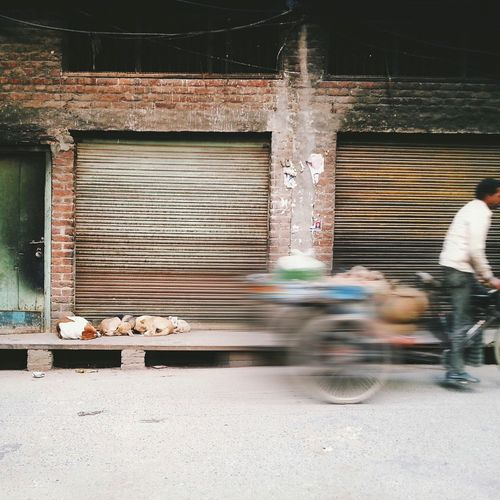 Blurred Motion Motion Architecture Real People Minimalist Architecture Dogs Outdoors Land Vehicle Building Exterior Sleeping Photooftheday Check This Out EyeEm Diversity TCPM
