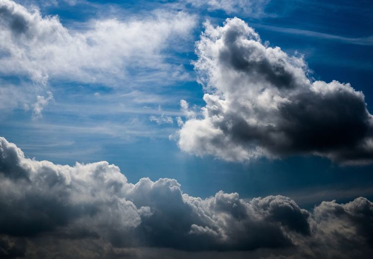 Beauty In Nature Nature Cloud - Sky Sky Atmospheric Mood Scenics Tranquility Cloudscape Blue Backgrounds Sky Only No People Majestic Environment Idyllic Softness Heaven Tranquil Scene Day Low Angle View