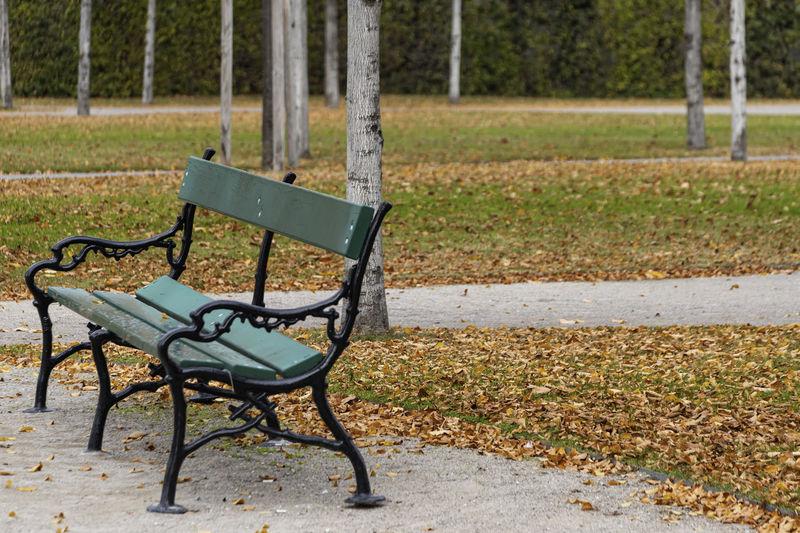 Empty Park Seat