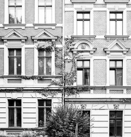 Location: Johannes-Wüsten-Straße Canon EOS 50E | APX 100 (new) | D-76 1+1 15,5min EyeEm Best Shots - Black + White Black & White Monochrome Canon EOS 50E AgfaPhoto APX 100 (new) Kodak D-76