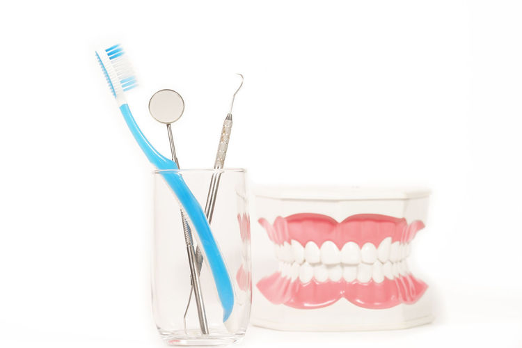 Dental model with toothbrush Healthcare And Medicine White Background Dental Health Studio Shot Indoors  Dental Equipment No People Close-up Still Life Hygiene Medical Equipment Sharp Cut Out Toothbrush Copy Space Syringe Needle Red Science Plastic Dentist