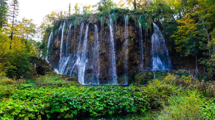 Waterfall view at Plitvice National Park Croatia Green Green Color Lakeview Landscape Photography National Park Nature Nature Photography Beauty In Nature Environment Forest Greenery Lake Lake View Lakes  Lakeshore Lakeside Landscape Long Exposure Outdoor Photography Outdoors Park Waterfall Waterfalls Waterfront