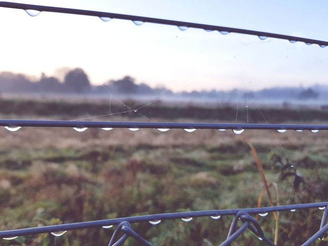 Metal Day No People Protection Outdoors Nature Defocused Close-up Wire Fence Water Droplets Desolation Lonliness Morning Misty Morning Mist S8Photography S8plus Smartphone Photography S8 Collection S8+ Smartphonephotography
