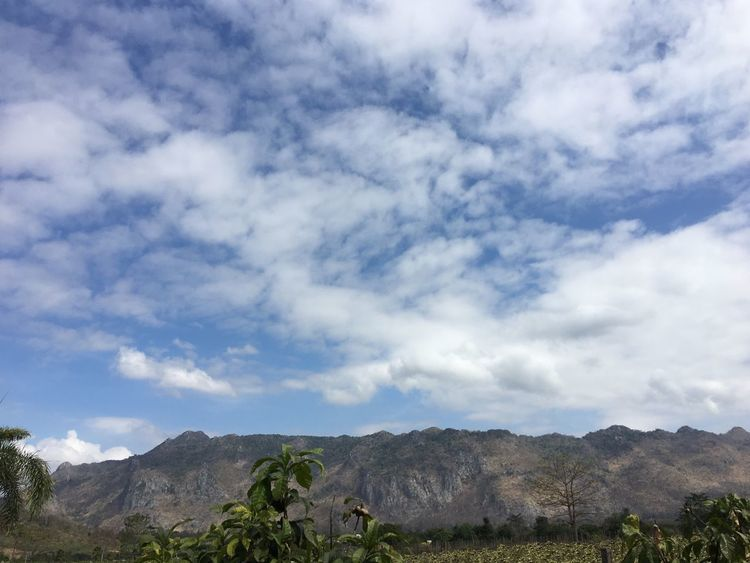 Sky Mountain Nature Beauty In Nature Cloud - Sky Day Scenics Landscape No People Tree Tranquility Outdoors Tranquil Scene