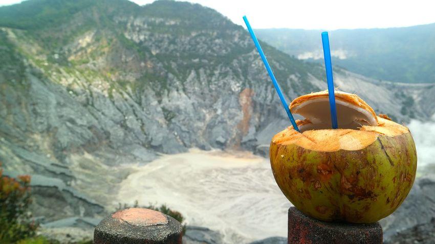 Coconut Fruit Vulcano Crater Lake Crater INDONESIA Nature