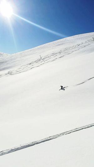 Montecristo #gransassoditalia EyeEm Selects Ski Scialpinismo Skiing ❄ Sole Neve Abruzzo Gransasso