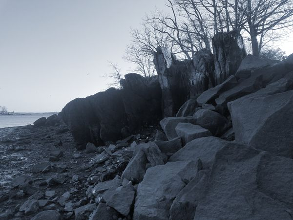 Black and white pic of tall boulders at Five Islands Park, New Rochelle (2/27/2018) Nature No People Beauty In Nature Outdoors Winter Sky Day Tree