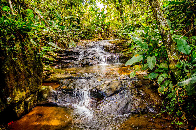 Ecoturismo Meleiro, Brazil Beauty In Nature Blurred Motion Day Ecoturism Forest Freshness Long Exposure Motion Nature No People Outdoors Scenics Travel Destinations Tree Water Waterfall