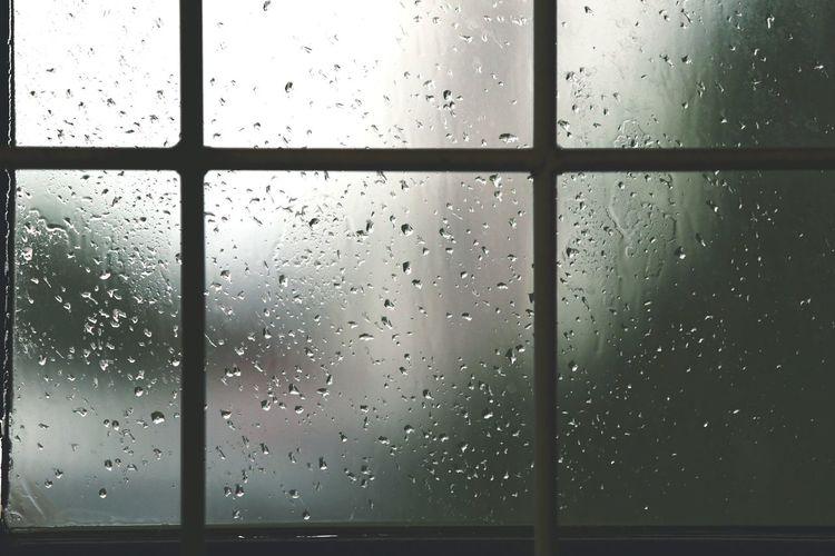 Rainy Water Frosted Glass Backgrounds Full Frame RainDrop Window Drop Wet Condensation Rain Translucent Rainy Season Scene Rainfall Shaped Energy Weather Under Umbrella Foggy Monsoon Transparent Glass Petal Pollen Blooming