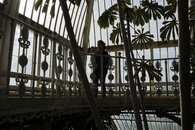 Kew Gardens, London UK - 2018 Nature Day Kew Gardens London Conservatory Plants Architecture Built Structure Glass - Material Green House Metal No People Tropical Climate Palm Tree Low Angle View Building Exterior Tree Outdoors Building Plant Railing Sky Travel Destinations My Best Photo