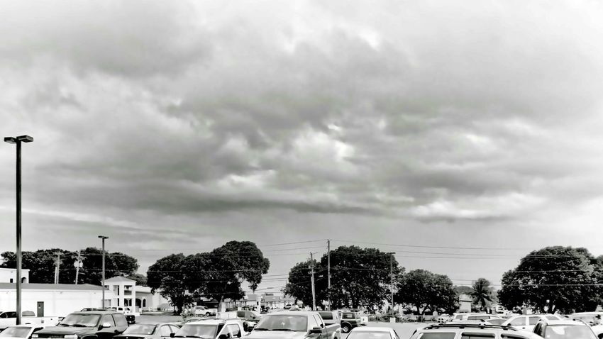 Out For A Walk At The Supermarket Clouds And Sky Black And White At Sion Farm St.Croix
