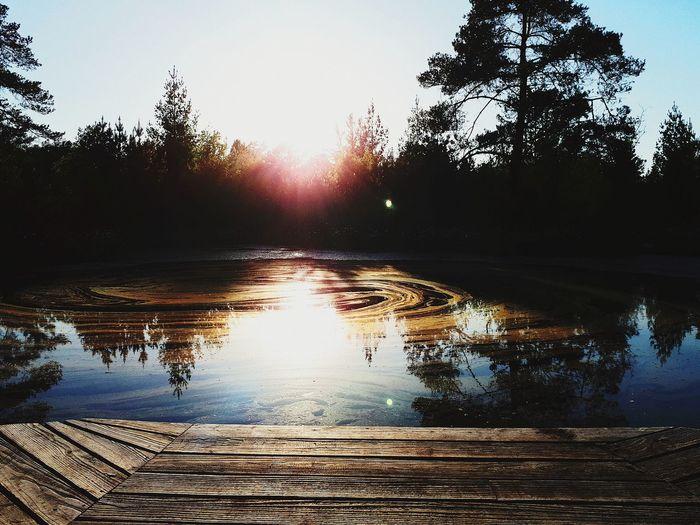 Sun Tree Sky Sunrise Shining The Great Outdoors - 2018 EyeEm Awards