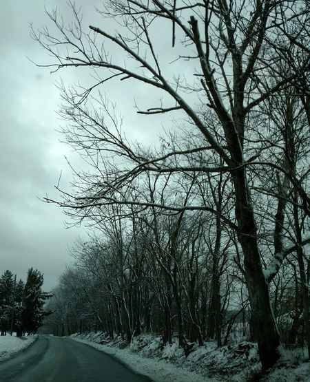 Winter Sky In Ohio! Winter Sky Snow Covered Trees My Perspective From My Lens Gods Beauty Winter Trees Snow Bare Branches I Love Bare Trees From My Point Of View Snowy Scene Showcase: February The Purist (no Edit, No Filter) Snow Covered Snowy Road