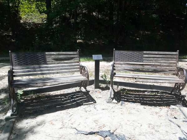 Park Bench Peace And Quiet US Flag Beautiful Day Enjoying The Sun Walking In The Park Trees And Nature 43 Golden Moments Showcase July Outdoor Photography Creative Light And Shadow Hidden Gems