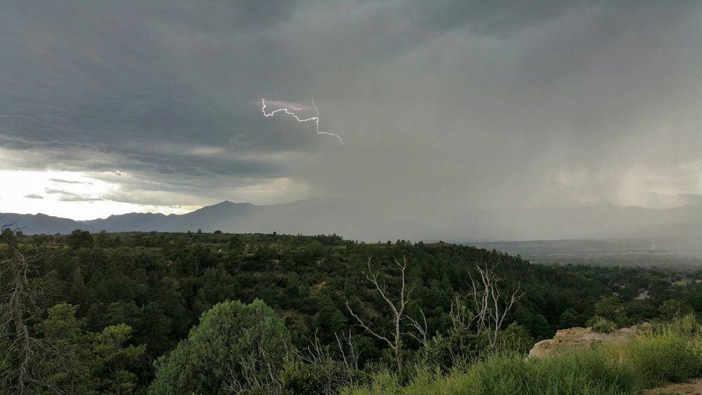 Lightning strike at palmer park. Lightning