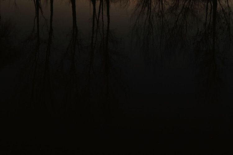 Blak And White Horror_of_darkness Erfan Horror Woods Dark Photography Sad Reflection In The Water