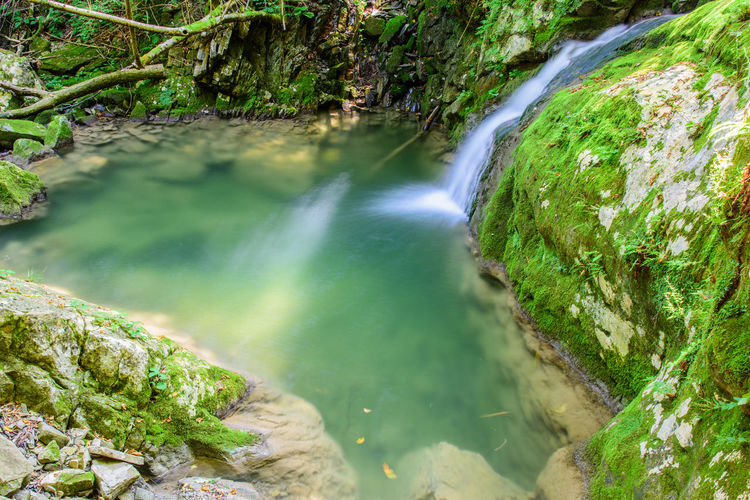 Waterfall Friuli Venezia Giulia Friuli Taipana Campo Di Bonis Waterfall Scenics River Nature Flowing Water Water Motion Beauty In Nature Long Exposure Rock - Object No People Tranquil Scene Tranquility Outdoors Day Green Color Forest Moss Rapid Waterfront Plant Freshness