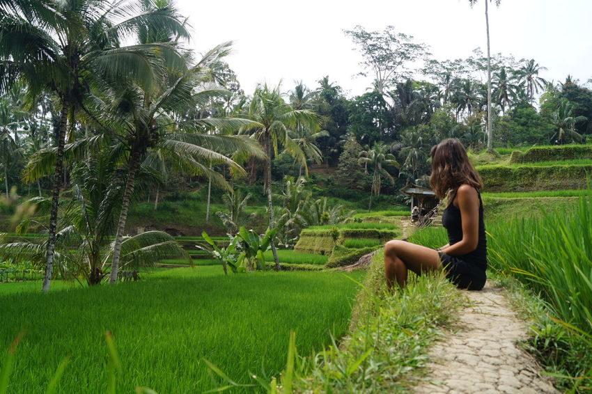 Bali Rice Paddy Tegallalang Rice Terraces Beauty In Nature Casual Clothing Day Field Full Length Grass Leisure Activity Lifestyles Nature One Person Outdoors Palm Tree Real People Rice Field Side View Sitting Tegalalang Tree Water Young Adult Young Women EyeEmNewHere